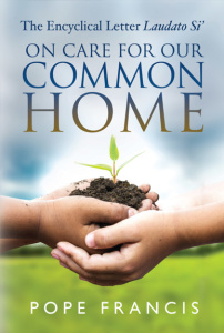 On Care For Our Common Home, Non-Fiction, Religious, Spiritual